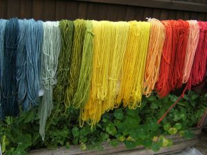 Plant dyed blue faced leicester yarn