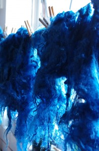 blue fleece small