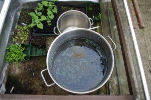 Organic Indigo Vat