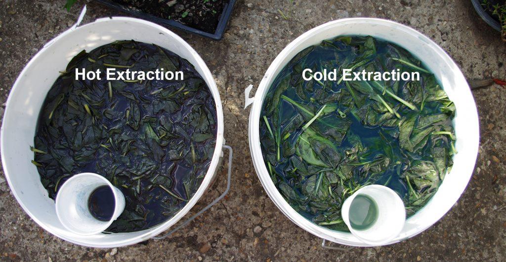 Indigo extraction from Japanese Indigo Hot and cold methods