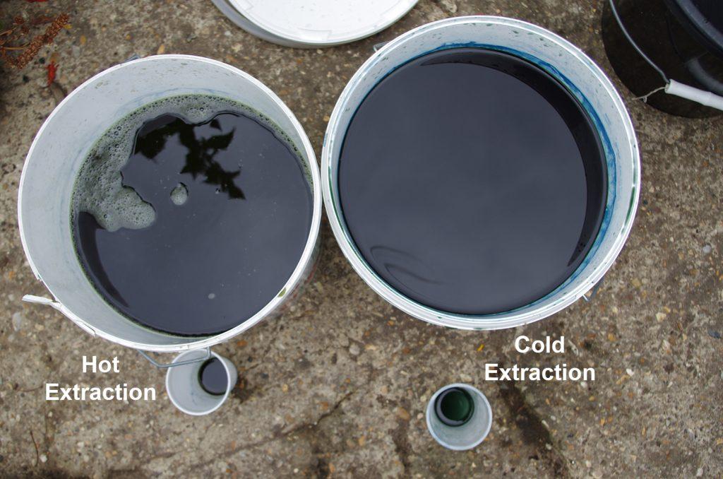 Indigo extraction from Persicaria tinctoria