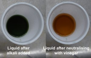Color changes from green to orangy yellow when liquid is neutralised with white vinegar