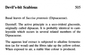 Scan of original reference from Chemical Dictionary of Economic Plants aparently confirming that a blue dye can be obtained from this plant
