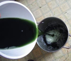 showing green liquid produced by adding ammonia