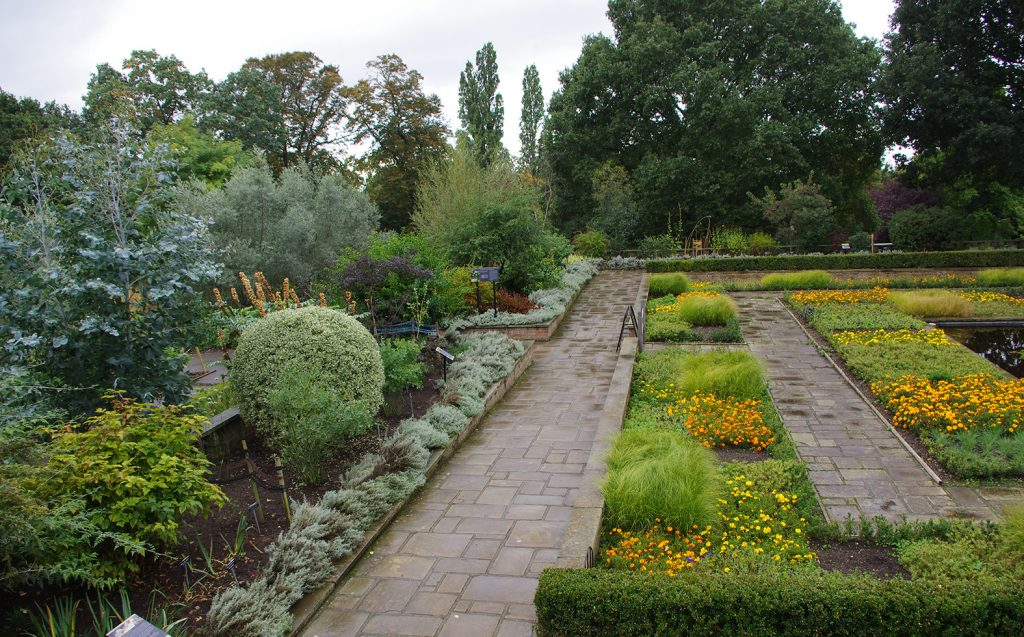 Formal layout of the Hornimans plant dye garden