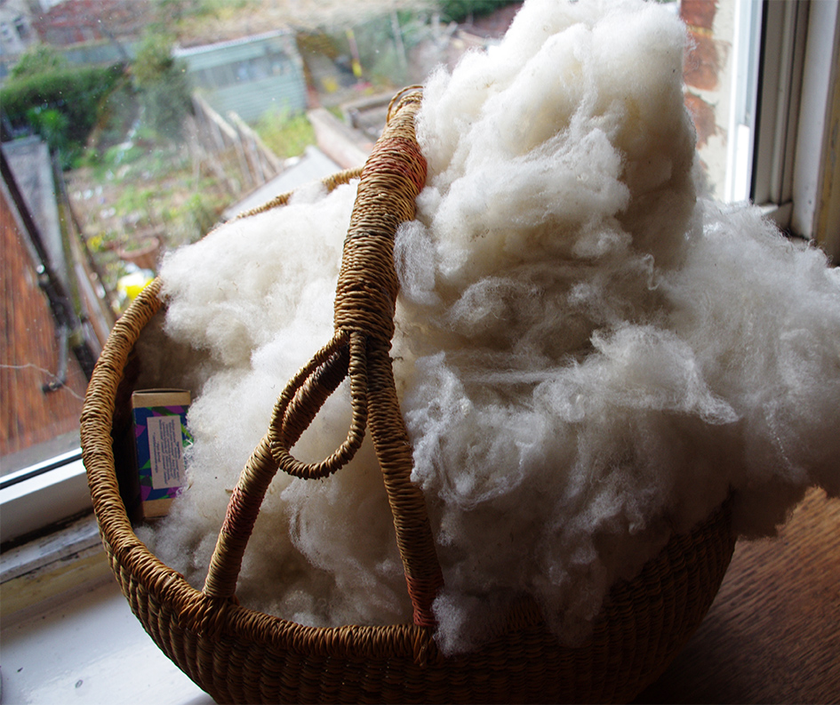 Basket of washed fleece