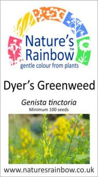Dyer's Greenweed seed packet