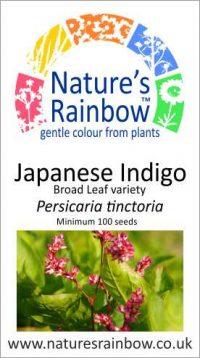 Japanese Indigo Broad Leaf Seeds