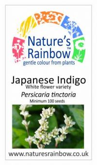 Japanese Indigo White flowered variety