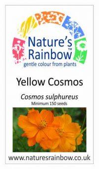 Yellow Cosmos seedpacket