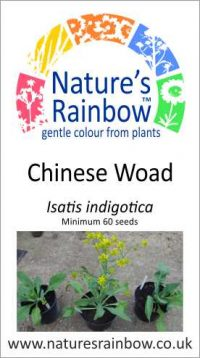 Chinese Woad Seed Packet